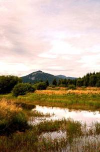 tour-mézenc-gerbier-de-jonc-étang des barthes à freycenet la tour