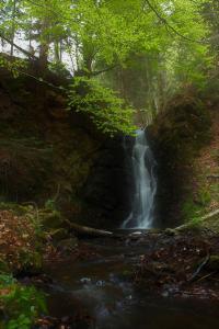 Cornut Pierre cascade du ruisseau de Chamoussel, commune de Saint-Arcons-de-Barges