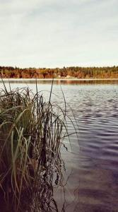 Faure Alban rive du Lac du Bouchet